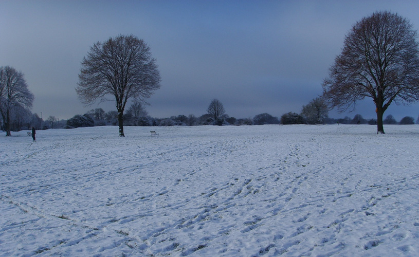 Snowy downs