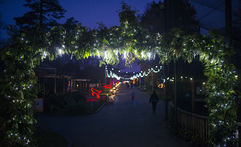 Bristol Zoo Gardens - where to see Santa in Bristol this Christmas