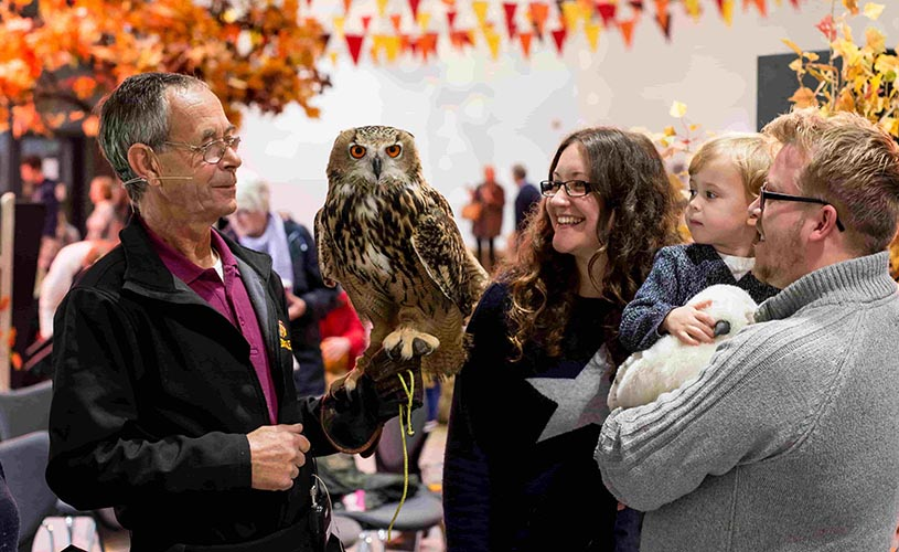 Owl and handler at Longleat's Great British Autumn