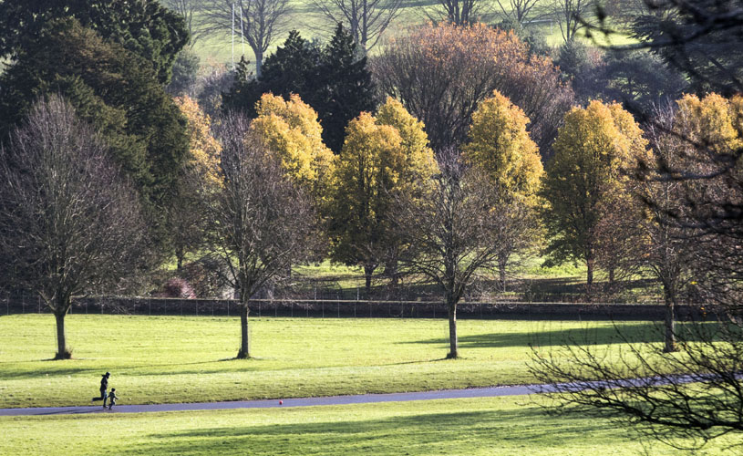Ashton Court Estate - Bristol's best parks for autumn leaf-peeping