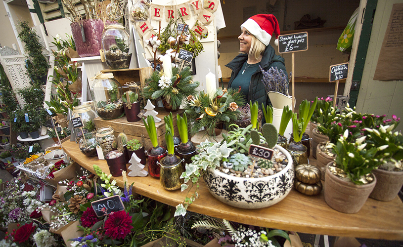 Plant stall at St Nick's Christmas Market