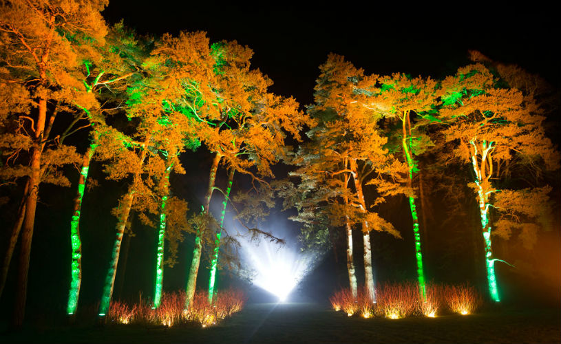 Westonbirt enchanted christmas