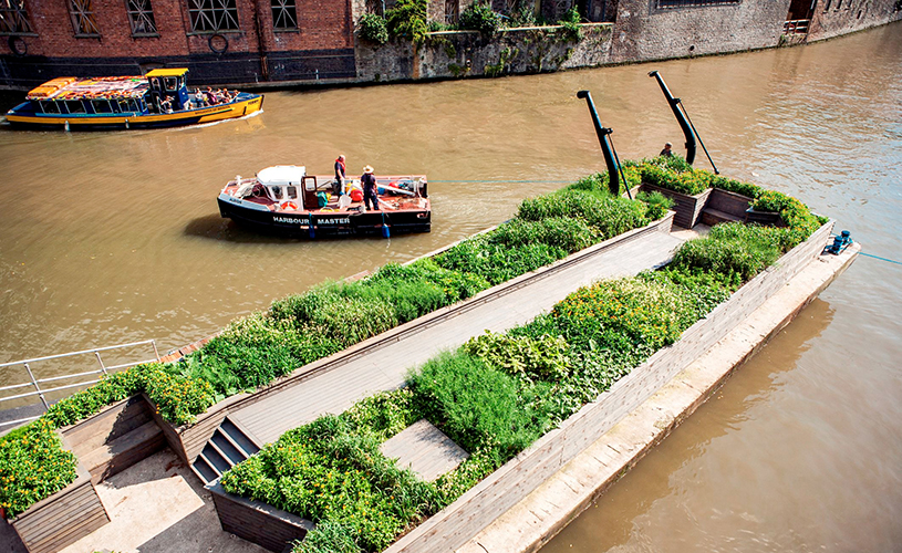 Floating seed garden - A-Z of Bristol