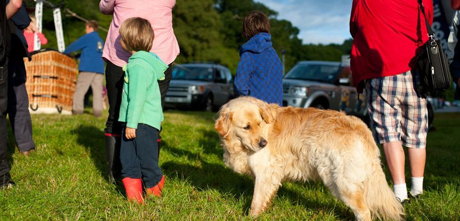 Dog-Friendly Accommodation in Bristol - VisitBristol co uk