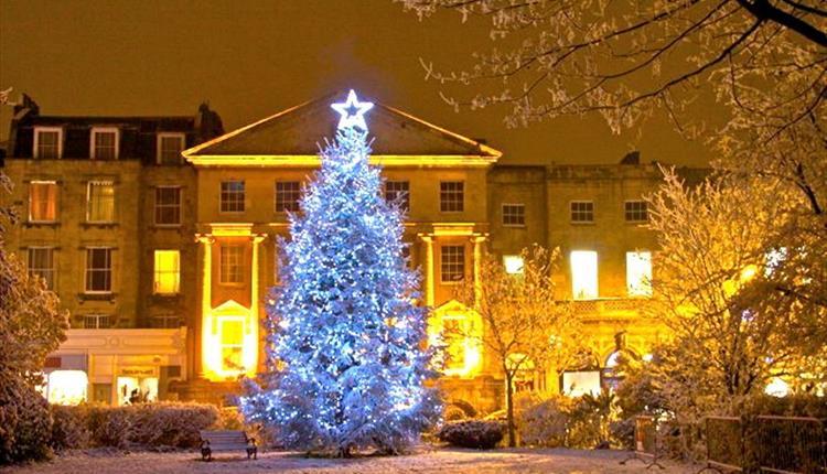 Christmas Tree Lights.The Big Clifton Christmas Tree Switch On Visit Bristol