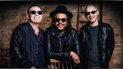 Forest Live: UB40 at Westonbirt, The National Arboretum