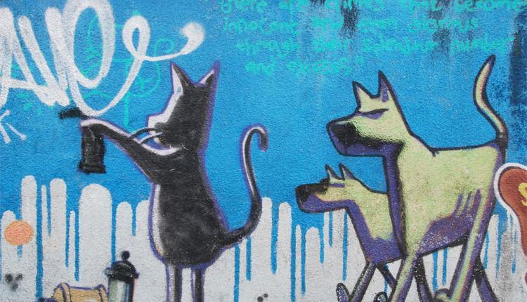 Banksy Graffiti Cat And Dog