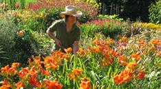 A gardener at Bristol Botanic Garden - Garden and Nature experiences in Bristol