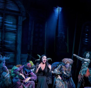Bristol Hippodrome theatre interview: Jacob Fisher, The Addams Family