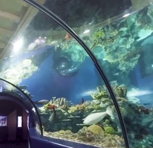 Video: Bristol Attractions in 360