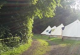 Brook Lodge Farm Camping (Bristol)