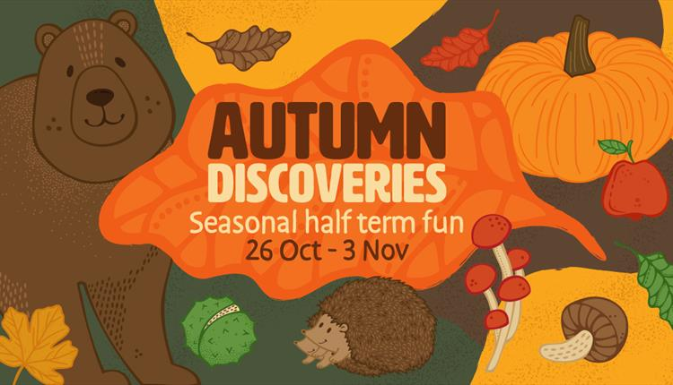 Autumn Discoveries: October Half Term at Wild Place Project