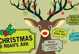 Christmas at Noah's Ark Zoo Farm