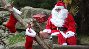 The Hide at Bristol Zoo Gardens - Christmas Parties