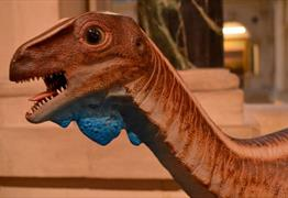 Dinosaur detectives at Bristol Museum & Art Gallery