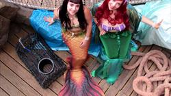 Mermaids & Monsters at Bristol Aquarium