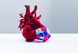 The Heart of the Matter at RWA
