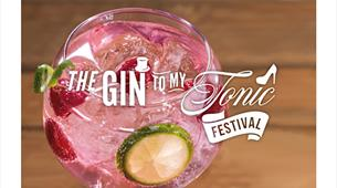 The Gin To My Tonic Festival at St George's Bristol