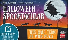 Halloween Spooktacular at Wild Place Project
