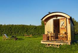 Walnut Tree Shepherd's Hut, Bunkhouse and Camping