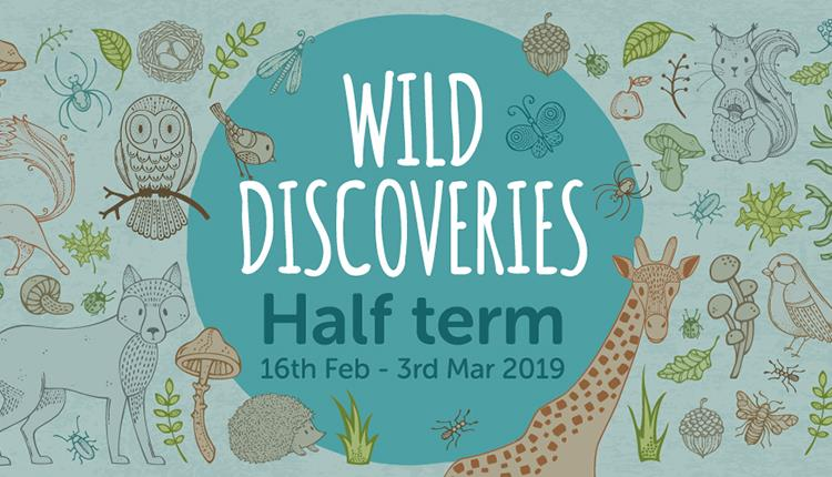 Wild Discoveries at Wild Place Project