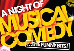 A Night of Musical Comedy at Broadlands School