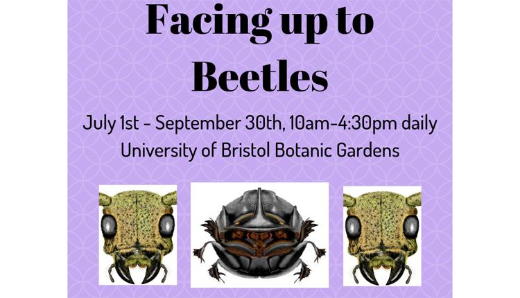 University of Bristol Insect Festival