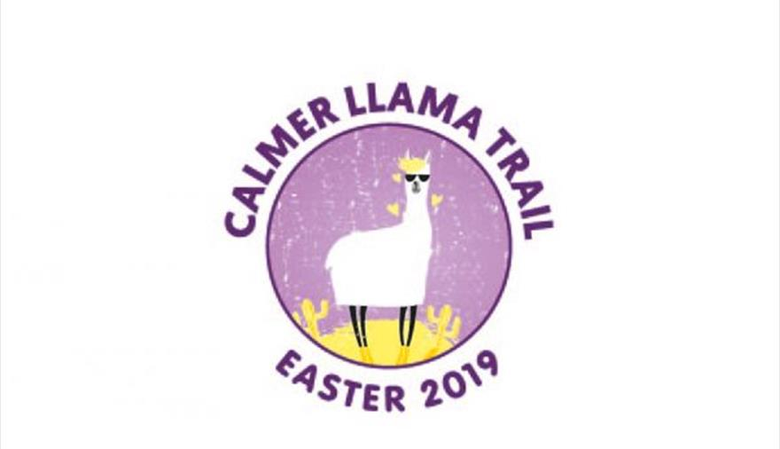 The Calmer Llama trail in Bristol Shopping Quarter
