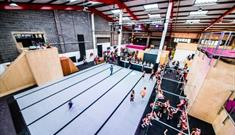 Freedog Urban Activity Centres Bristol