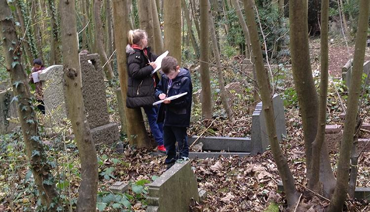 Autumn Forest Fun- Little ones edition at Bath Road