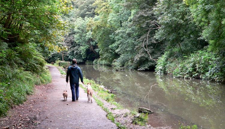 Walking along the river Frome