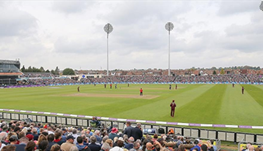 Afghanistan v Australia - 2019 ICC World Cup game at The County Ground